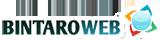 Bintaro Webhost